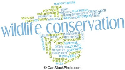 Word cloud for Wildlife conservation - Abstract word cloud...