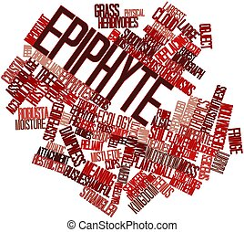 Word cloud for Epiphyte - Abstract word cloud for Epiphyte...