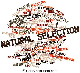 Natural selection - Abstract word cloud for Natural...