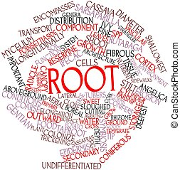 Word cloud for Root - Abstract word cloud for Root with...