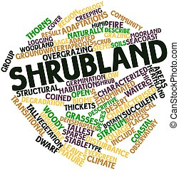 Shrubland - Abstract word cloud for Shrubland with related...