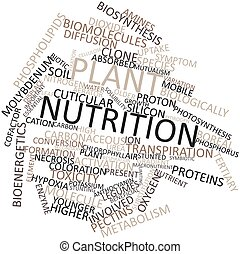 Word cloud for Plant nutrition - Abstract word cloud for...