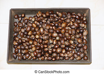 Bunch of nutmeg can be used as background