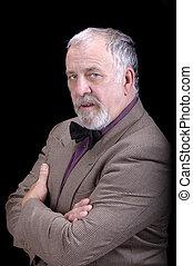 older businessman or professor - older businessman with a...