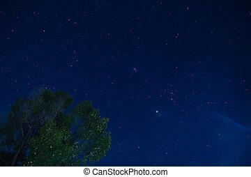 noche, cielo, estrellas, nebulosa, natural