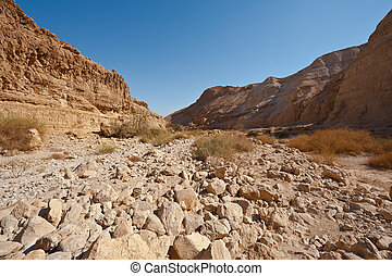Riverbed - Dry Riverbed in the Judean Desert