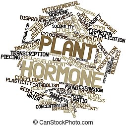 Plant hormone - Abstract word cloud for Plant hormone with...