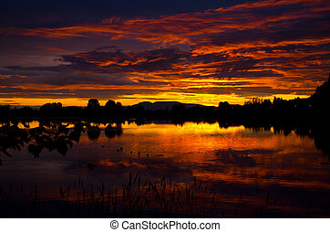 Scenic sunset - A majectic view of the sun setting behind...