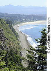High View of Oregon Coast