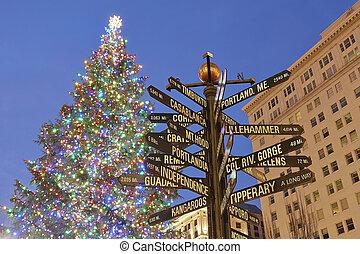 Natale, albero, Portland, pioniere, quadrato