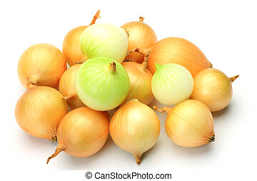 petit onion - I took many petit onions in a white background...