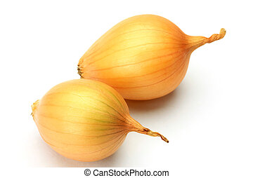 petit onion - I took two petit onions in a white background