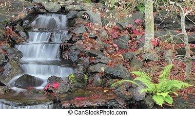 Timelapse of Waterfall in Backyard