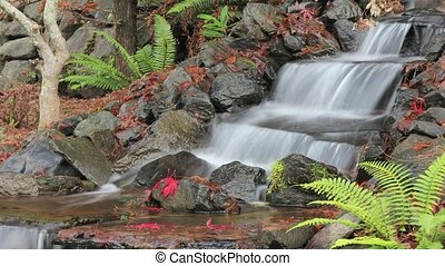 Timelapse of Waterfall in Backyard - Timelapse of Waterfall...
