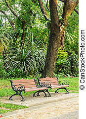 Benches in the park in the summer.