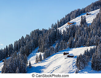 Ski resort Schladming . Austria - Winter landscapeSki resort...