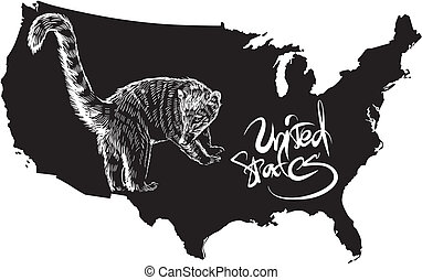 Coati and U.S. outline map. Black and white vector...
