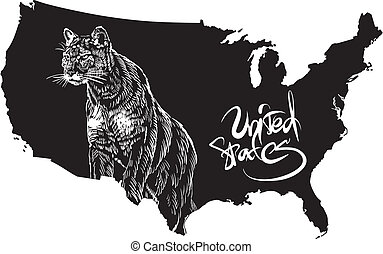 Cougar and U.S. outline map. Black and white vector...