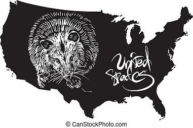 Opossum and U.S. outline map. Black and white vector...