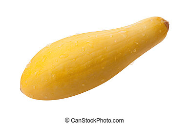 Yellow Squash Isolated with clipping path on a white...