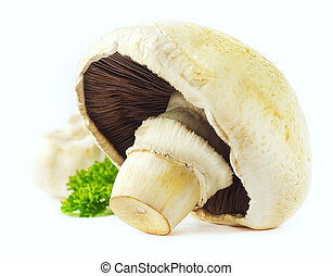 'Agaricus' mushrooms in a plate on  background