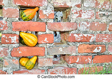 Old brick fence decorated for fall - Gold, orange, and green...