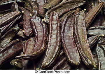 The Carob Ceratonia siliqua - The mediterranean carob...
