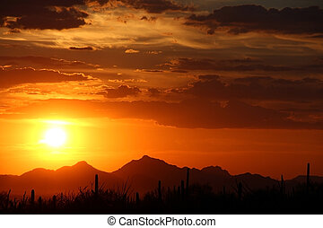 Desert Sunset - Arizona Sky