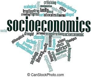 Socioeconomics