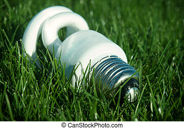 Energy saving light bulb on grass