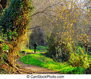 man and dog walking on trail