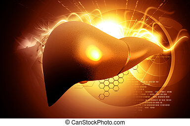 Liver - Digital illustration of liver in colour background...