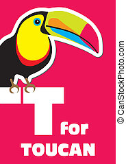 T for the Toucan, an animal alphabe