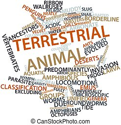Terrestrial animal - Abstract word cloud for Terrestrial...