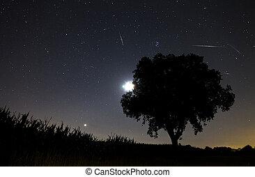 Perseids, Meteor, przelotny deszcz