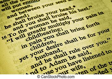 Genesis 3:16 in the world english bible