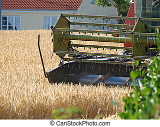 Combine harvests a field