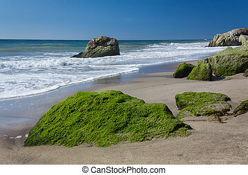 Moss Covered Rocks at Leo Carillo State Beach in Malibu,...