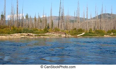 Flathead River in Montana - North Fork Flathead River flows...