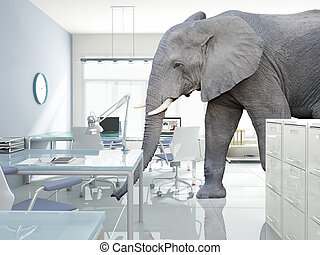 elephant in a room - huge elephant walk in modern office