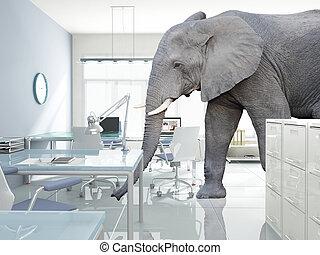 elephant in a room - huge elephant walk in modern office