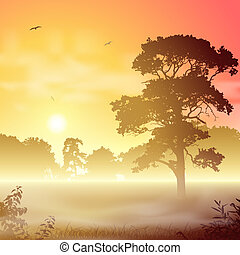 Misty Landscape - A Misty Forest Landscape with Trees and...
