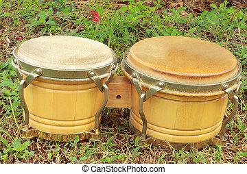 Bongo Bongo laid to grass green