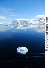 small ice floe in antarctica - ice floe