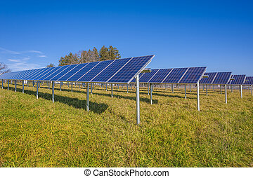 Solar panels in field with blue sky