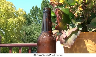 Claw Grabs Cold Beer Bottle in Sun - Toy claw grabs cold...