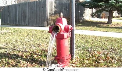 Fire Hydrant Draining Water - Red fire hydrant drains water...