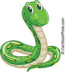 snake - illustration of green snake on a white background