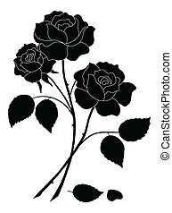 Flowers rose, silhouette - Flowers, rose bouquet, love...