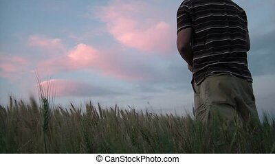 Guy in Wheat Field Watching Colorful Clouds - Man watches...